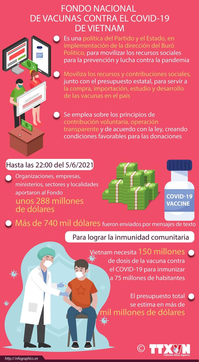 Fondo Nacional de Vacunas contra el COVID-19 de Vietnam hinh anh 1