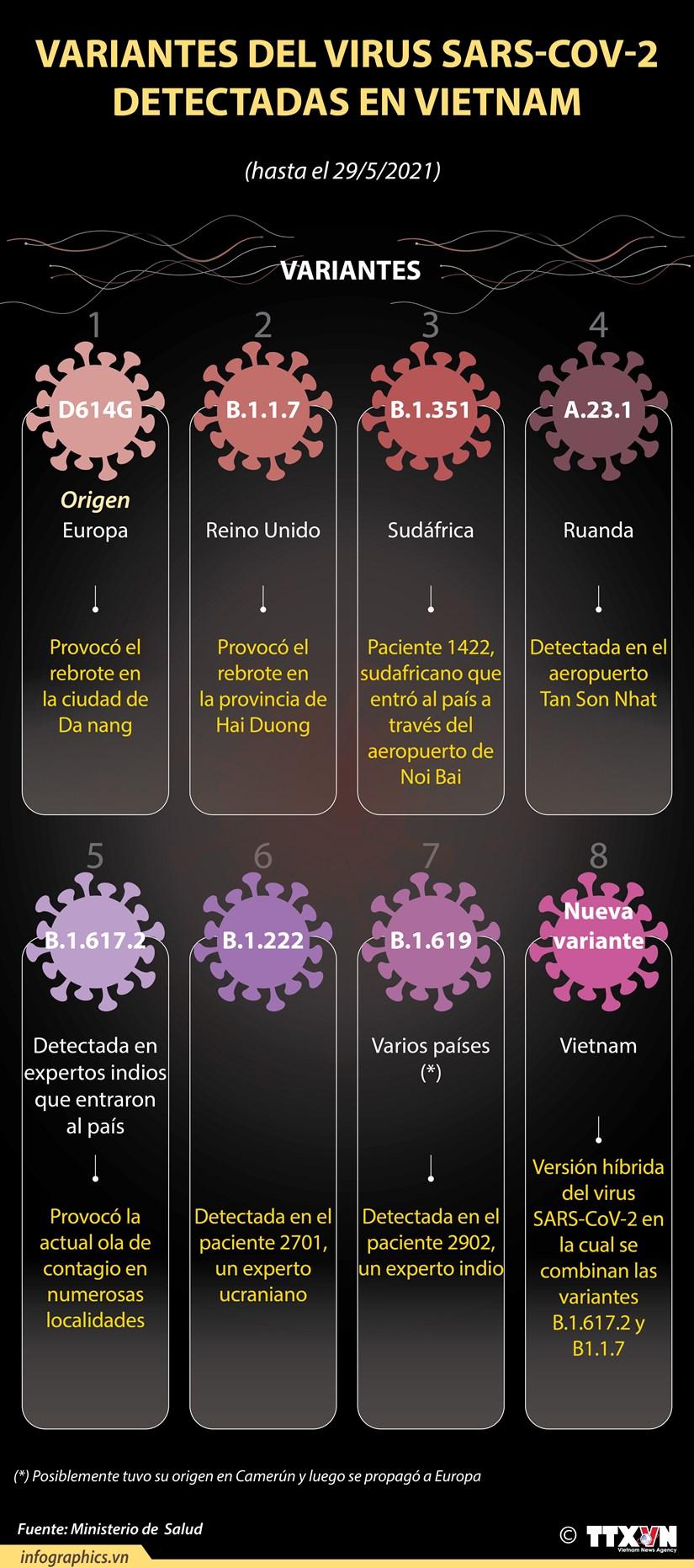 Las variantes del virus SARS-CoV-2 detectadas en Vietnam hinh anh 1