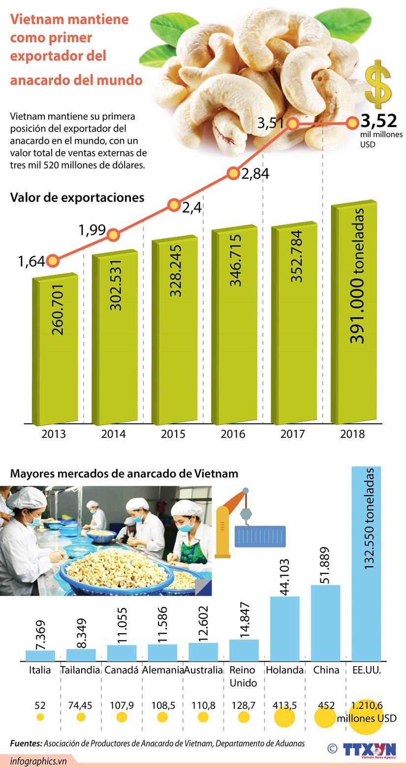 [Info] Mantiene Vietnam como primer exportador del anacardo del mundo hinh anh 1