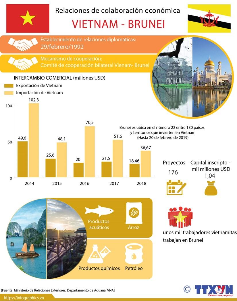 [Info] Relaciones de colaboracion economica Vietnam-Brunei hinh anh 1