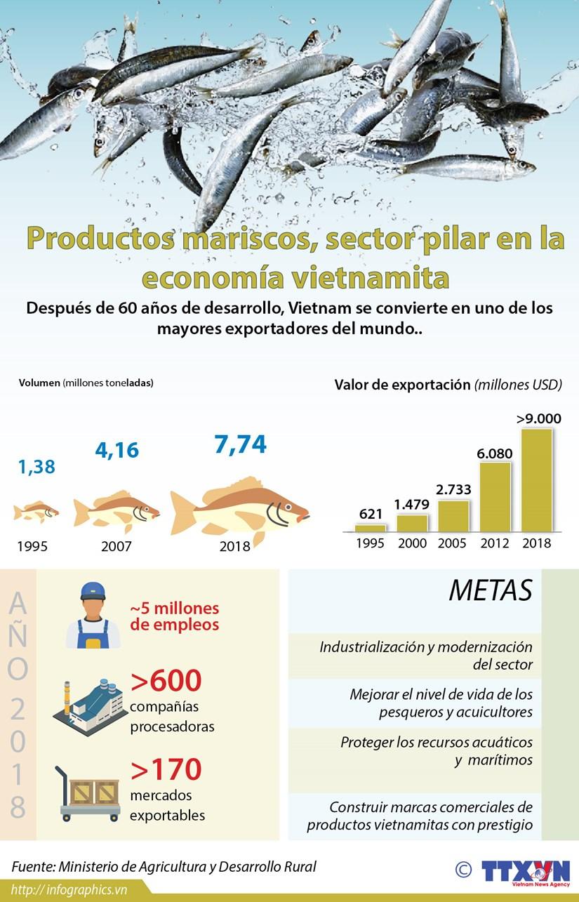 [Info] Productos mariscos, sector pilar en la economia vietnamita hinh anh 1