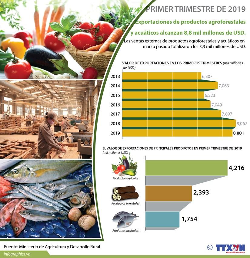 [Info] Exportaciones de productos agroforestales y acuaticos alcanzan 8,8 mil millones de USD hinh anh 1
