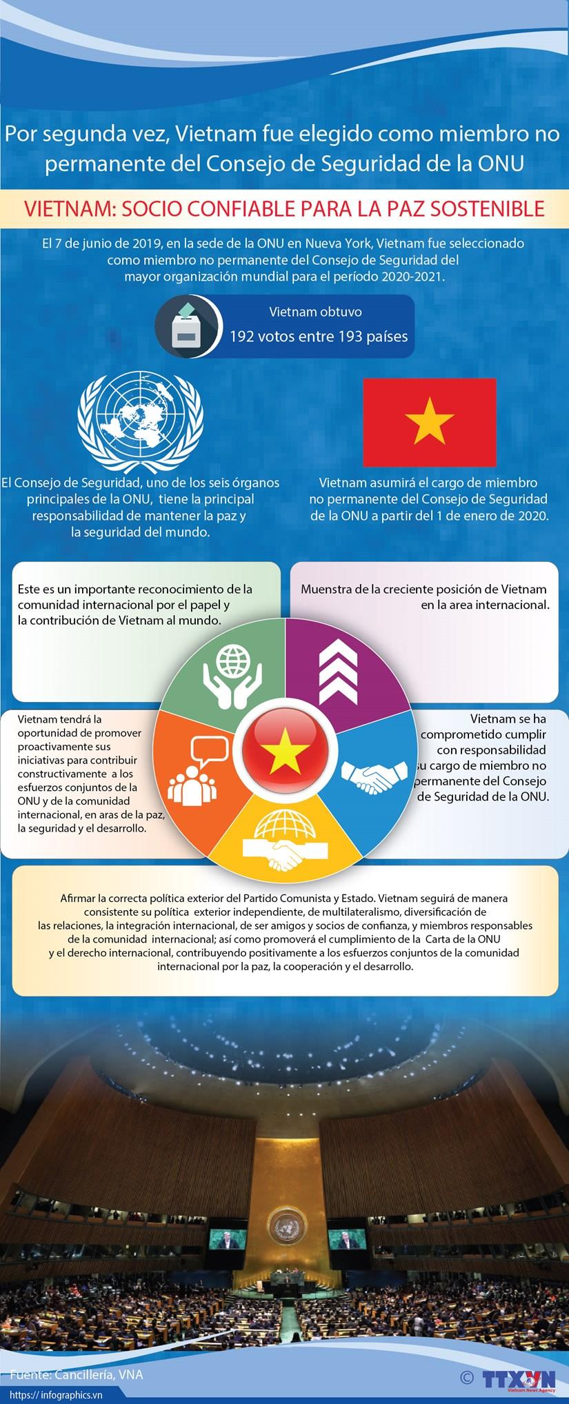 [Info] Vietnam fue elegido como miembro no permanente del Consejo de Seguridad de la ONU hinh anh 1