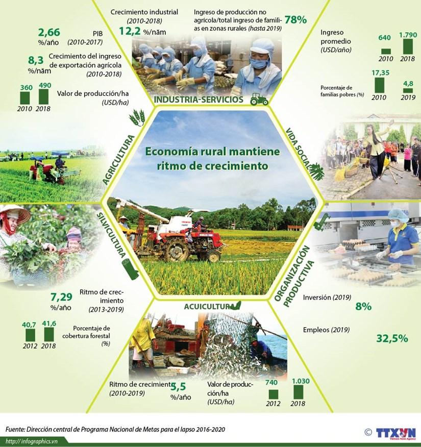 [Info] Economia rural mantiene ritmo de crecimiento hinh anh 1