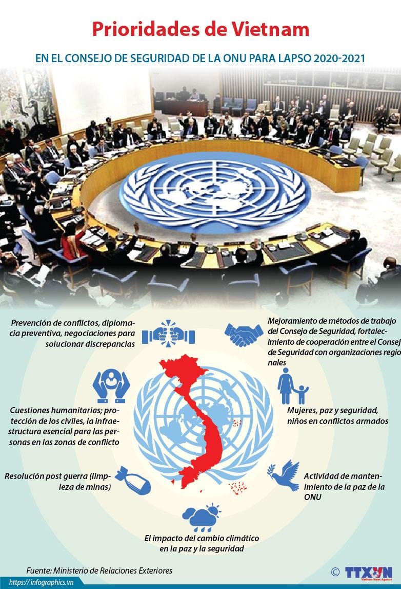[Info] Prioridades de Vietnam en el Consejo de Seguridad de la ONU para lapso 2020-2021 hinh anh 1