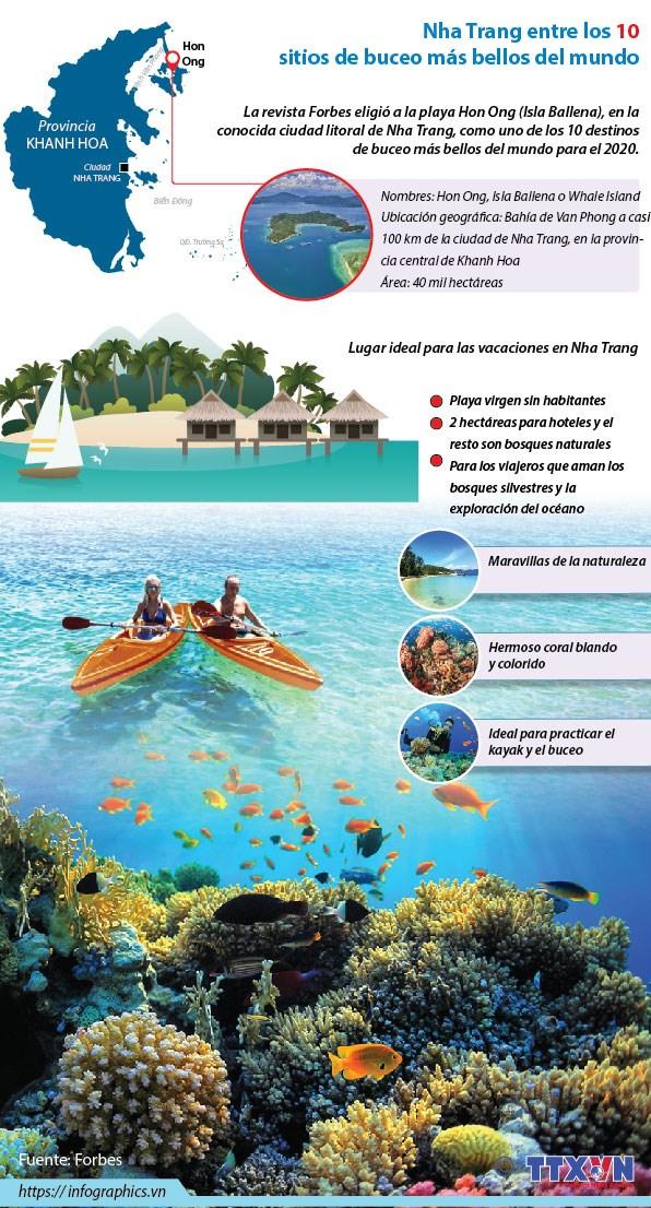 [Info] Nha Trang entre los 10 sitios de buceo mas bellos del mundo hinh anh 1