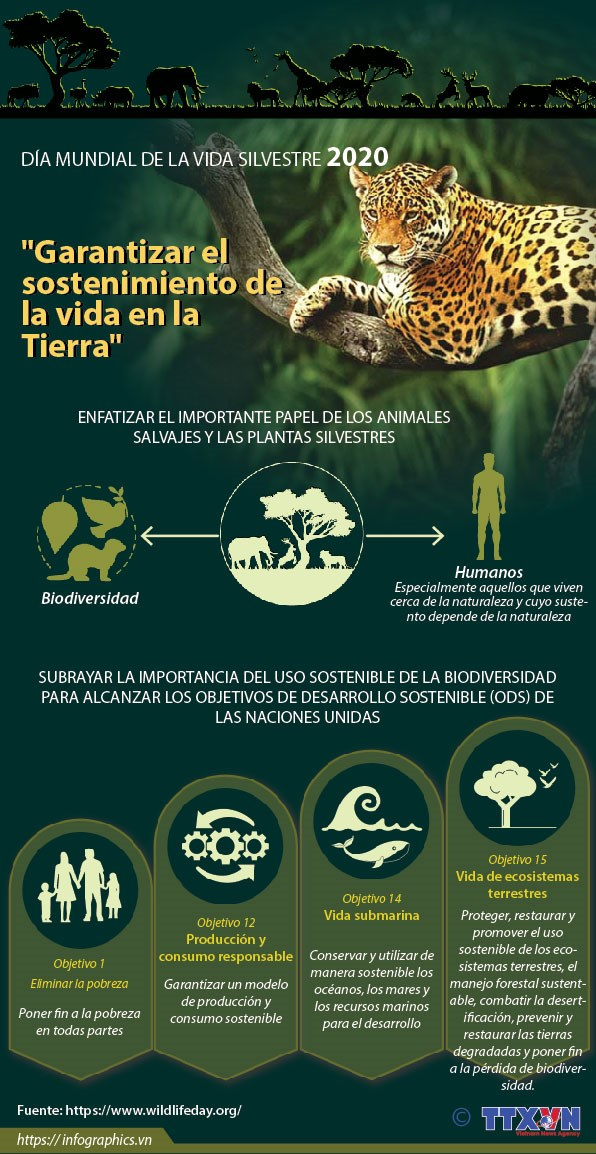 [Info] Dia Mundial de la Vida Silvestre 2020 hinh anh 1