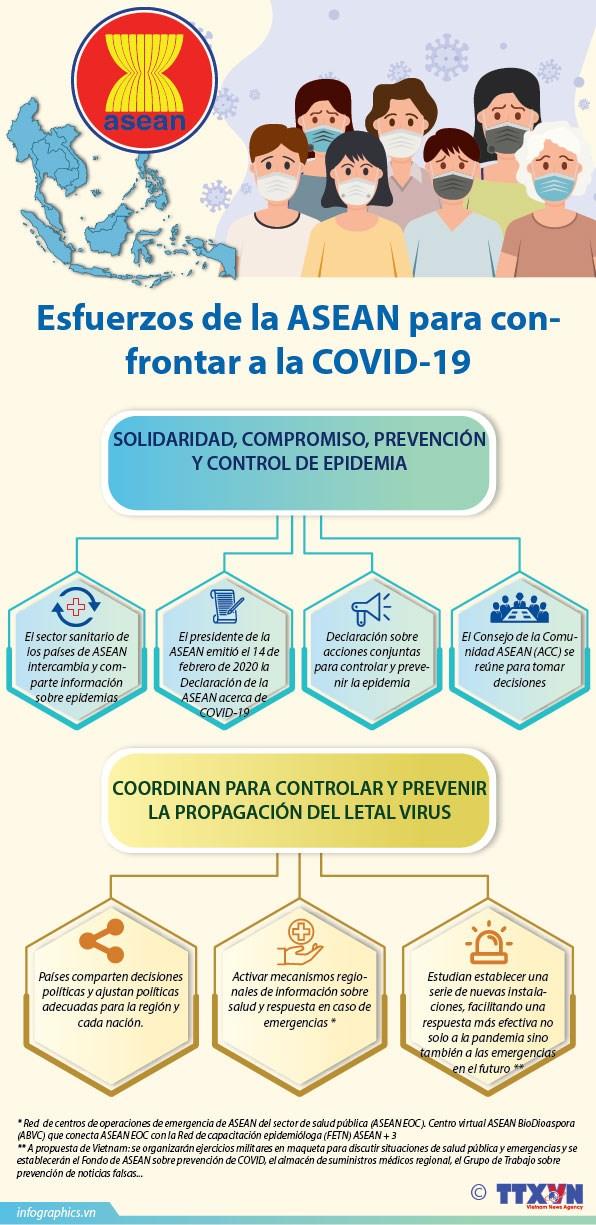 [Info] Esfuerzos de la ASEAN para confrontar a la COVID-19 hinh anh 1