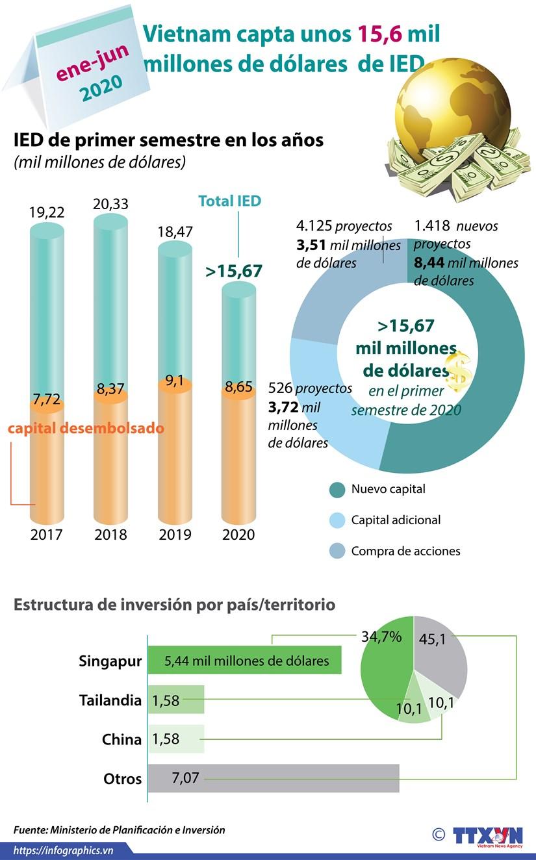 [Info] Disminuye inversion extranjera en Vietnam en primer semestre de 2020 hinh anh 1