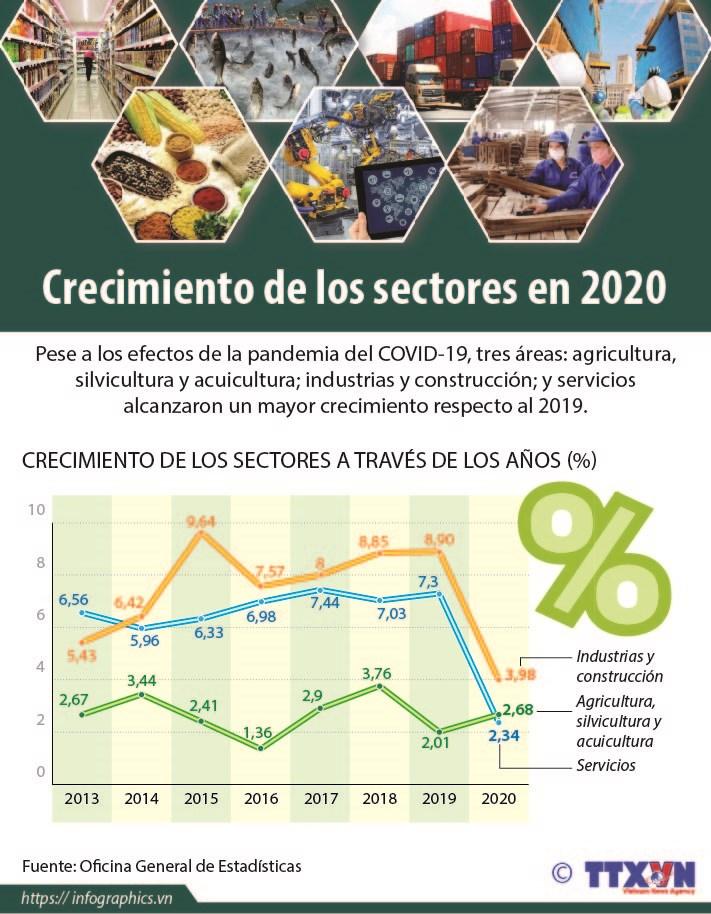Crecimiento de los sectores en 2020 hinh anh 1