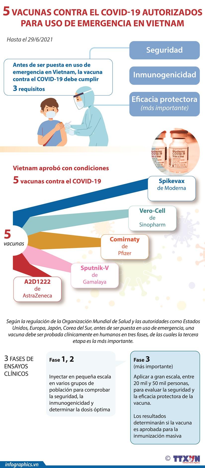 Cinco vacunas contra el COVID-19 autorizados para uso de emergencia en vietnam hinh anh 1