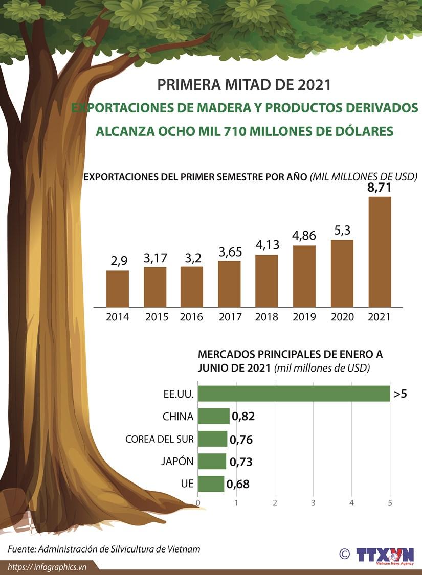 Exportaciones de madera de Vietnam alcanzan 8,71 mil millones de USD hinh anh 1