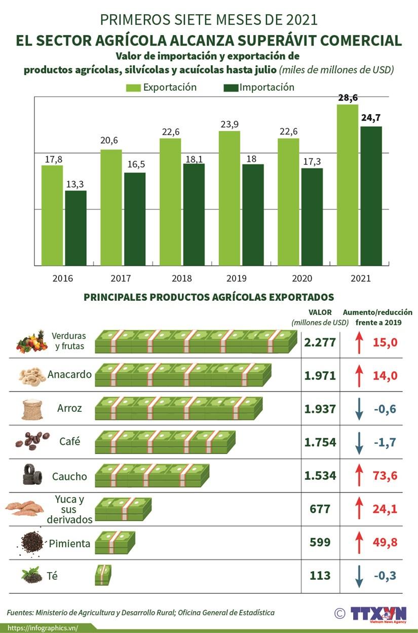 Sector agricola alcanza superavit comercial en los primeros siete meses de 2021 hinh anh 1